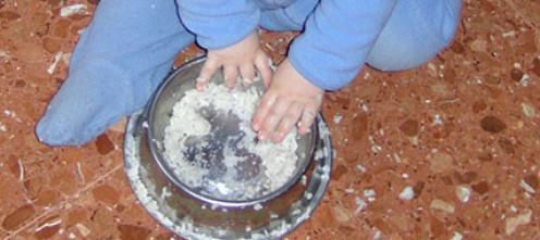 Игра с варёным рисом